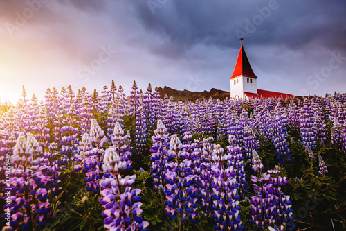Wall mural - Great view of Vikurkirkja christian church. Location place Vik i Myrdal village, Iceland, Europe.