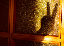 Finger Hare Shadow On Glass