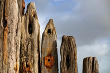Re-Cycled Wooden Groynes