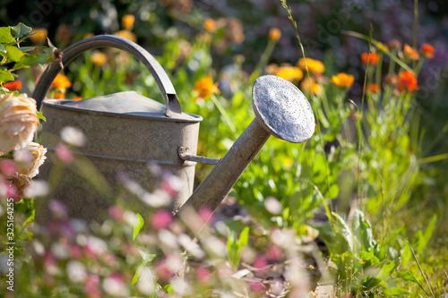 Obraz Petit jardin fleuri au printemps et arrosoir. - fototapety do salonu