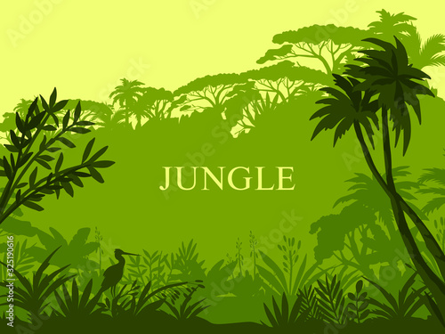 Vector jungle background with palm trees, exotic flora, stork outline and copy space Canvas Print
