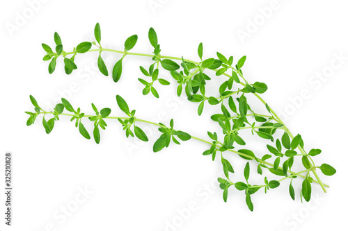 Fototapety, obrazy: Fresh thyme spice isolated on white background, Top view. Flat lay.