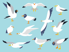 Vector Set Of Beautiful Seagul...