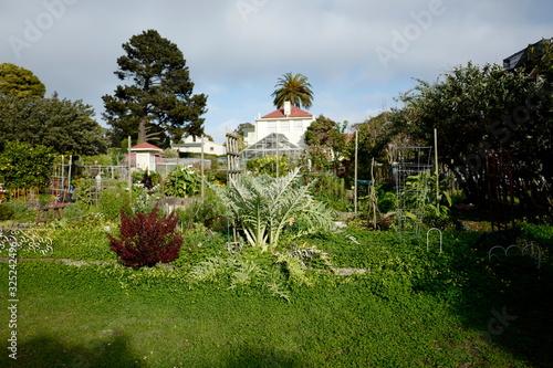 Entrance to green neighborhood garden area