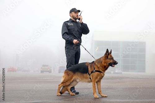 Fotografia Male police officer with dog patrolling city street