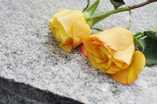 Yellow Roses On The Granite St...
