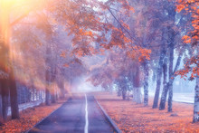Autumn Landscape Morning In Th...