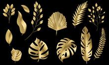 Vector Leaves Gold Set Design ...