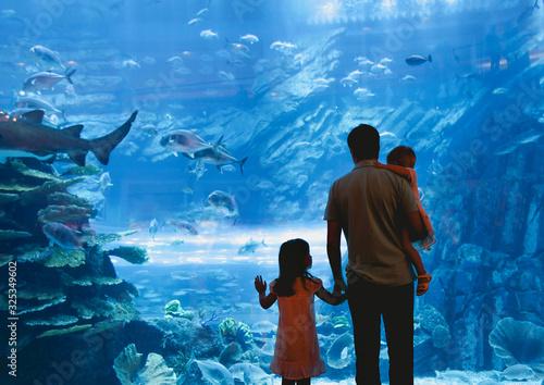Father with daughters watching fish in oceanarium Wallpaper Mural