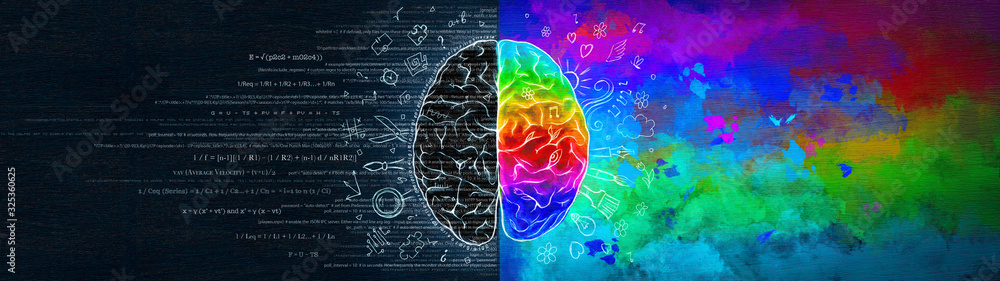 Fototapeta The Difference in the Work of the Right and Left Hemispheres of the Brain. Analytical Thinking Versus Abstract. Ultrawide Illustration.
