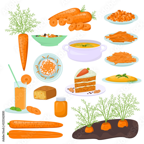 Carrot food products vector illustration Fototapet