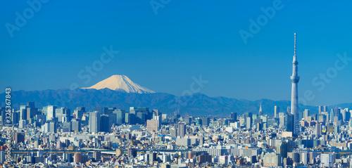 Fotomural 東京風景 2020年1月 富士山と大都会