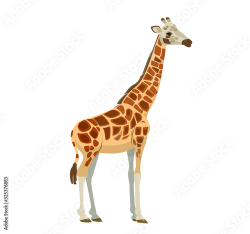 Photo A giraffe, a bright tall African animal, in a realistic style.