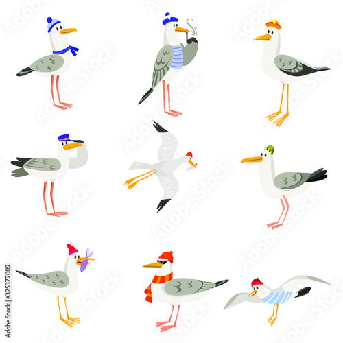 Set of funny cartoon gulls in scarves and hats Canvas Print
