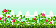 Grass And Roses On A Background Of A Fence And Sky. Horizontal Seamless Pattern. Vector Illustration.
