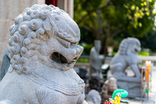 Chinese Lion Statues, Mythical...