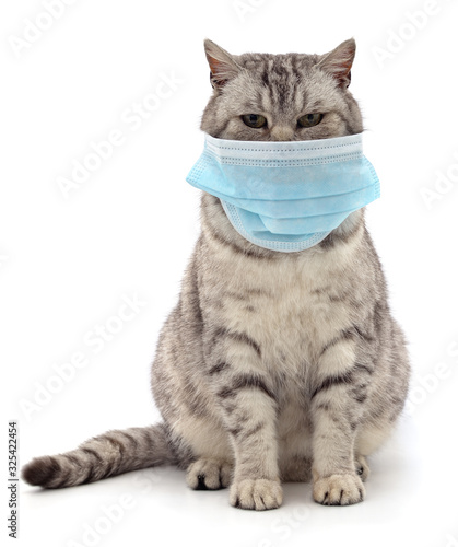 Cat in medical mask. Papier Peint