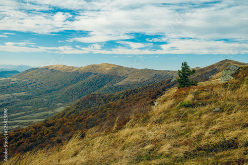 Fototapety, obrazy: picturesque mountain ridge wilderness highland environment with lonely tree on top and cloudy moody weather time of autumn season