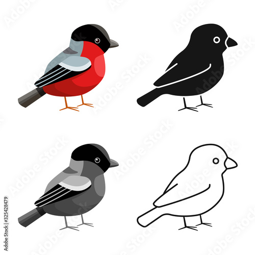 Fotografia Isolated object of bullfinch and bird logo