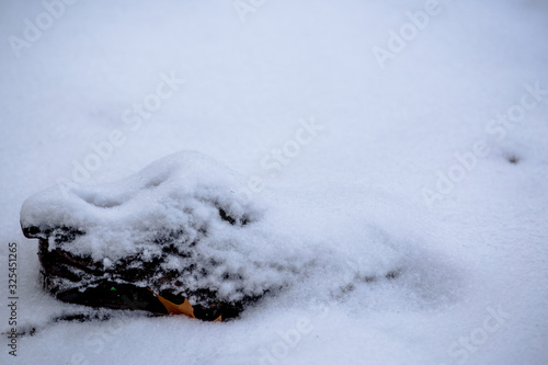 Snows Aftermath Canvas Print