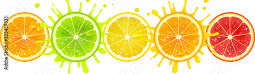 Banner with Citrus Fruits