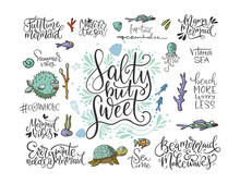 Summer Sea Lettering Big Vector Set. Ocean Quotes And Clip Art Collection. Perfect For T Shirt, Card Print Design. Graphic Nautical Marine Theme Illustration. Salty But Sweet.