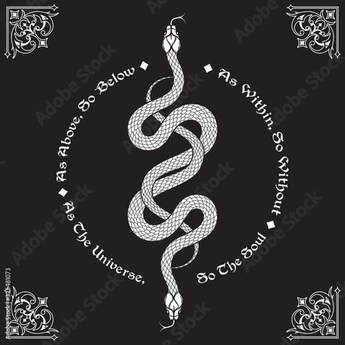 Fotografía Two serpents intertwined