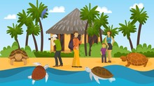 People Group On Excursion Watching Wild Turtles On Ocean Sea Shore Vector Illustration. Tourists Vacation Trip To Tropical Exotic Island With Marine Animals Turtles. Palm Trees, Bungalow, Parrot.