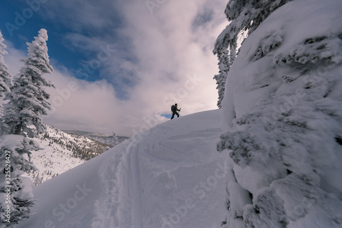 Backcountry ski touring in canadian mountains splitboarder Canvas Print
