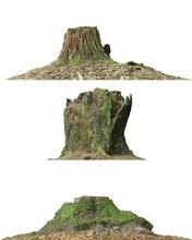Stump Dead Tree Isolated On White 3d Illustration