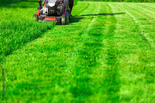 Fotomural Lawn mower cutting green grass in backyard, mowing lawn