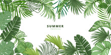 Summer Tropical Leaf Frame, Tr...