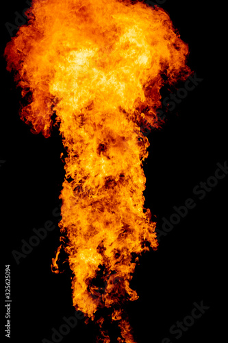 Valokuvatapetti Yellow red and orange fire flames blazing fiery burning isolated on a black back
