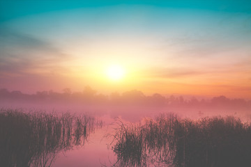 Obraz na Szkle Do sypialni Magic sunrise over the lake. Misty early morning, rural landscape, wilderness, mystical feeling. Serenity lake in magical light