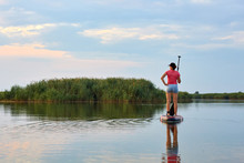 Woman On SUP (Stand Up Paddle Board), Paddling At The Calm Lake Near Reeds In The Evening