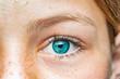 canvas print picture - Nahaufnahme eines weiblichen Auges mit blauer Iris