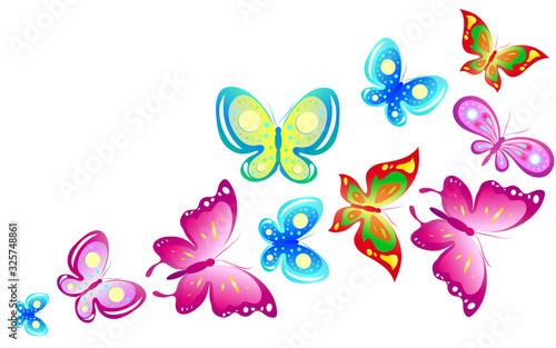 butterfly422