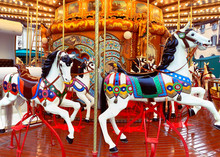 White Painted Horses In A Caro...