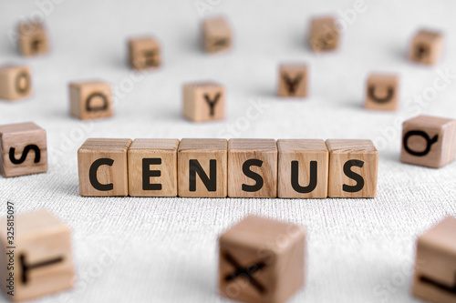 Fényképezés Census - words from wooden blocks with letters, official count or survey of a po