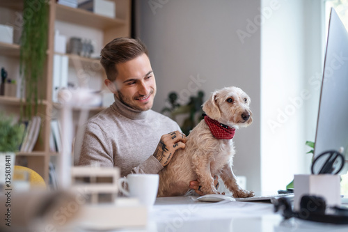 Young businessman with dog sitting at the desk indoors in office, using computer Canvas Print