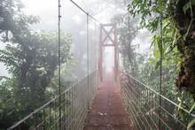 A Bridge In The Monteverde Cloud Forest Biological Reserve Costa Rica
