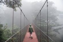 Rear View Of Boy Walking On Ro...