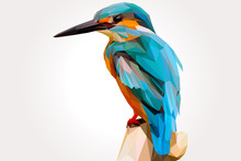 Cool Kingfisher Bird In The Branch Lowpoly Vector Illustration
