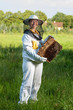 canvas print picture - Beekeeping in the Czech Republic - honey bee, details of hive