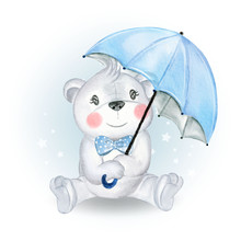 Baby Bear Holding Umbrella