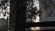 Black Wood Slat Park Bench With Sun Peering Through Lats Producing Lens Flares