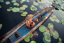 Burmese Intha Woman In A Rowing Boat In The Morning At In Dain Khone Village, On Inle Lake, Myanmar.