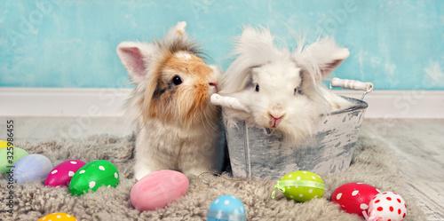 zwei lustige Osterhasen mit bunten Ostereiern