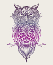 Owl Mandala Pattern Style With Rainbow Color On White Background-vector Illustration Art