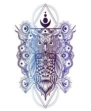 Illustration Vector Owl Mandal...